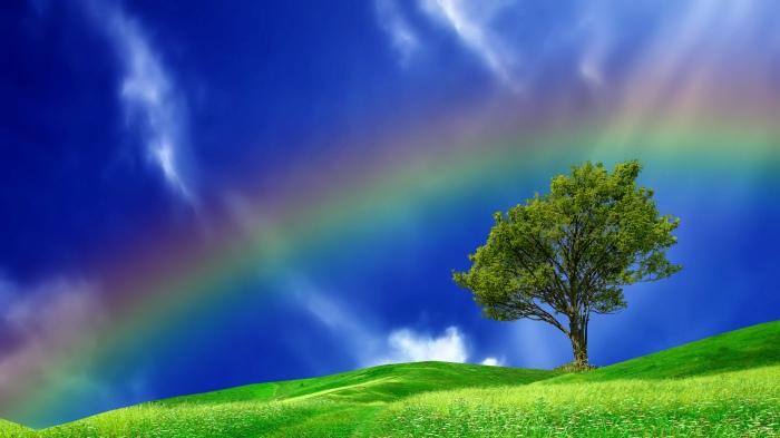real-rainbows-in-the-sky-wallpaper-3